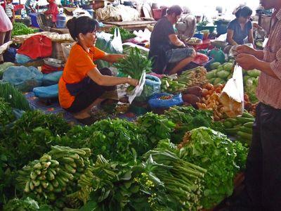 VientianeD239