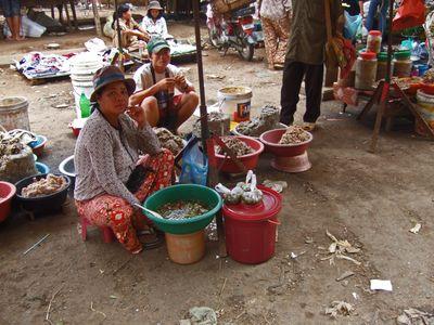 Cambodia200802 008