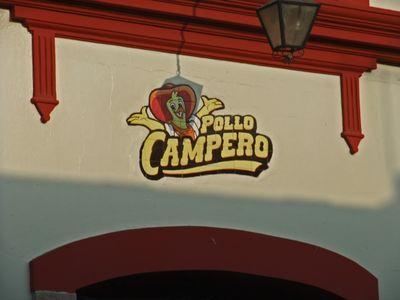 PolloCampero01