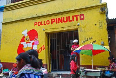 PolloPinulito01