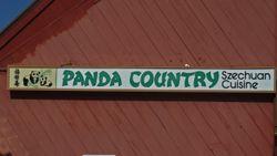 PandaCountry11