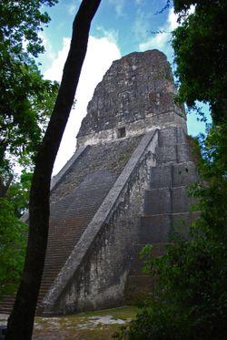 Tikal08