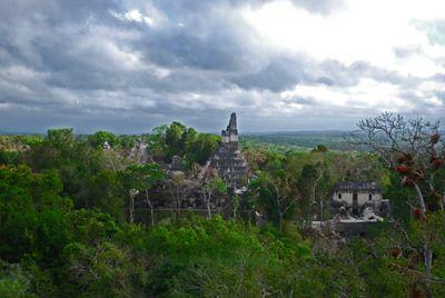 Tikal09