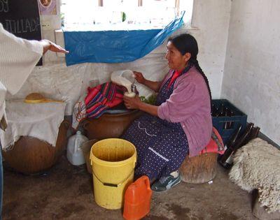 Peru1 338