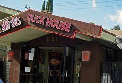 DuckHouse11