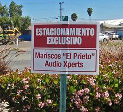 MariscosElPrieto02