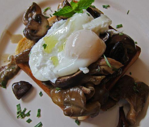 Mushroom Ragout Poached Egg 01