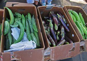 LV Farmers Market05