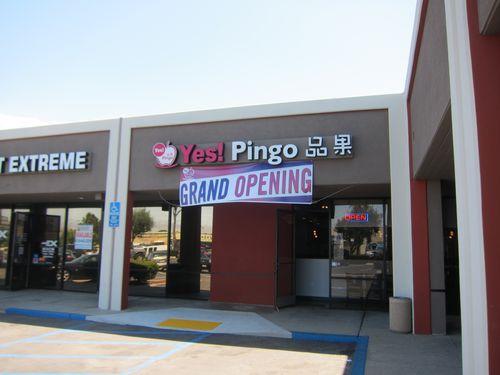 Yes Pingo 01