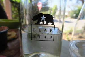 Bear and Star 07