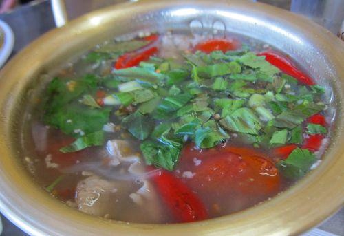 Thai Papaya 04