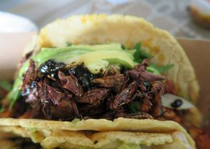 Tacos Perla 06a