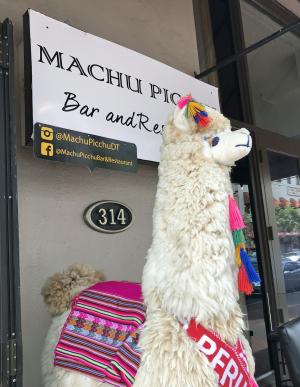 Machu Picchu Rest 11