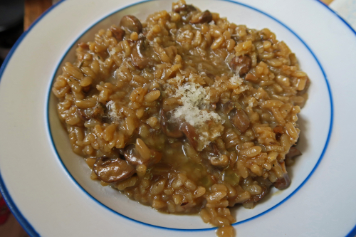 Mushroom Risotto for Dinner