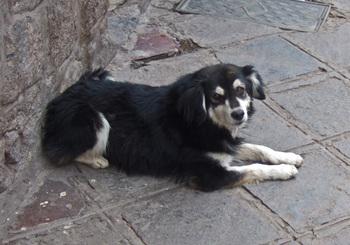Peru1_150