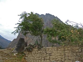 Peru1_383