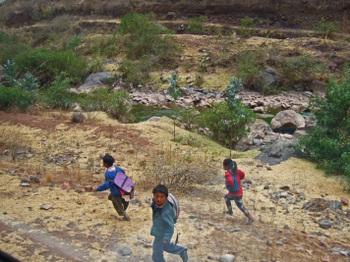Peru1_490