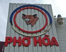 Phohoa08