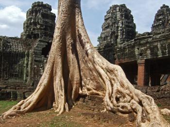 Cambodia200801_625