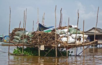 Cambodia200801_411
