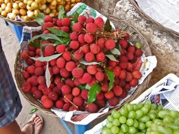 Cambodia200801_432