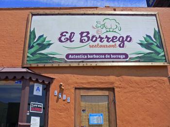 El_borrego01