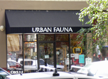 Urbanfauna01
