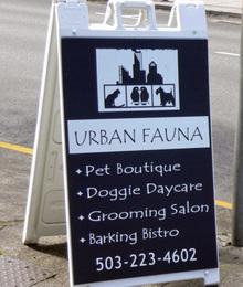 Urbanfauna02