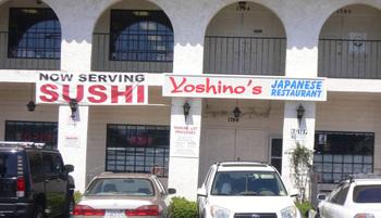 Yoshinos01